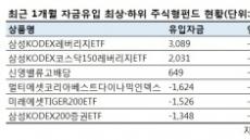 과감해지는 ETF 시장…'1배수' 팔고 '2배수' 사들였다