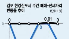 공급량 넘쳐나는 김포 '소화불량'?