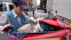 [뉴스탐색]선거공보물에 정부가 시킨 매트리스 수거까지…집배원 잡는 '잔인한 6월'