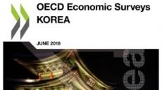 "[OECD 한국경제 전망]""부가세-금리 올리고 기초연금 추가 증액해야""…OECD 정책 권고"