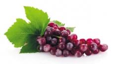 가지·베리류·포도 '보라색 푸드'…장수비결이라는데 어떻게 먹을까요