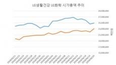 LG그룹株 판도 격변…LG생건이 대장주 올라서나
