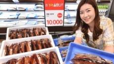 '금(金)징어' 잊으세요…홈플러스, 국산 햇오징어 할인 판매
