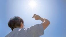[달궈진 여름, 건강챙기기 ①] 따가운 햇볕, 피부는 벌벌 떱니다