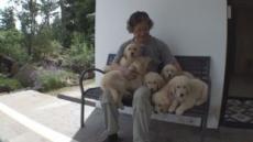 SBS 동물농장…말썽쟁이 리트리버 7남매, 올드보이 고양이 등장