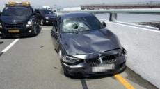김해공항 BMW 사고, 최고시속 131km로 돌진…제한속도의 3배