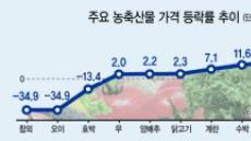 [펄펄 끓는 한반도] 타는 대지에 밥상물가 비상…경제 악영향 우려