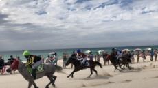 말(馬)과 쉼표있는 삶…해변경주, 야간경마, 情 나눔