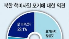 """국민 43% """"北, 핵미사일 포기 않을 것"""""""
