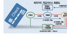 지자체가 포문 연 'PAY 춘추전국시대'