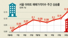"""""""추가규제 뻔한 카드 일텐데…"""" 서울 집값 내달에 또오르나"""