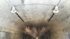 '전쟁의 아픔' 머문 자리…예술로 위로를 더하다