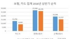[2018 상반기 실적]보험ㆍ카드업계 암울한 성적표
