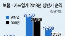 [금융권 2018 반기보고서 분석] 보험·카드업계 상위사도 우울한 성적표