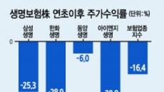 실적부진·규제강화·즉시연금 복병까지…생보사 '내리막길'