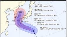폭염 식혀줄 효자태풍 '솔릭' 한반도 상륙…韓·日 기상청 '다른 예보'