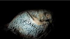 유병창 작가, 두번째 사진전…'제주 주상절리 새겨진 조각' 앵글에 담아