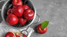 [리얼푸드]다이어트 식단 속 사과, 효과보려면 껍질채로…