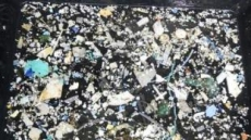 태평양 플라스틱 쓰레기, 日·中이 가장 많이 버렸다