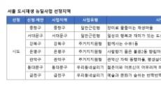 """[도시재생 뉴딜] 서울 구도심이 대다수…""""집값 오르면 조치"""""""