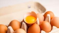 알고 먹으면 더 맛있는 국민 식재료 '계란'