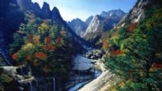 [2018 남북정상회담-평양] 물꼬트인 환경 협력…심각한 北 산림ㆍ하천오염 공동대응 주목