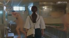 """'숨바꼭질' 측, 목욕탕신 사과…네티즌 """"여성  남탕 침입은  성범죄"""""""