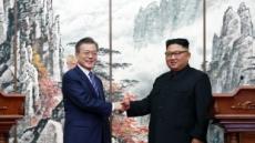 '평화모멘텀' 살린 文대통령, 김정은 메시지 들고 트럼프와 '종전선언' 담판