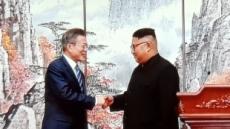 평양공동선언 공세 수위 높위 한국, 수위 조절하는 바른미래