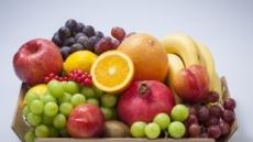 [추석 연휴, 무엇이 중한디 ①] 비만엔 배ㆍ눈엔 사과…제철과일이 최고랍니다