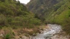 두타연의 한반도 물줄기 지나, 엄홍길 DMZ 평화 종주
