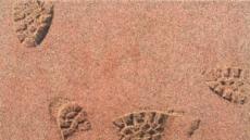 해변의 모래는 내 발자국을 기억한다…