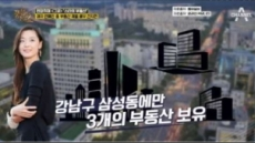 """""""전지현, 770억대 부동산 보유…강남에만 3개"""""""