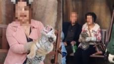 中 동물원, 새끼호랑이랑 사진 찍기 논란
