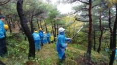한라시멘트, 동해서 '숲가꾸기' 체험행사