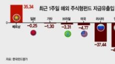"""답답한 신흥국펀드…""""다시한번 믿어보자, 베트남"""""""