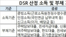 DSR 어떻게 산정하나...소득, 객관자료만 100% 인정