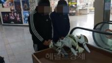 강서PC방 살인 피의자, 내일 정신감정…'심신미약 감경' 논란 가열