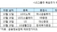 LG그룹주 줄줄이 목표가↓…왜?