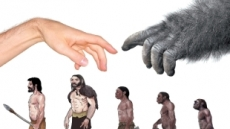 진화론으로 설명하는…특별하고 경이로운 존재 '인간'
