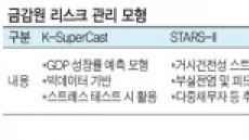 금감원 '리스크관리 3종세트' 이달내 공개