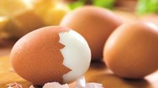 다이어트한다고 닭가슴살만?…똑똑한 단백질 섭취법