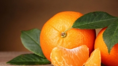 [리얼푸드]본격적인 감귤의 계절…감귤을 먹으면 뭐가 좋을까?