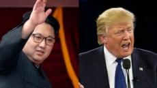 """펜스 """"트럼프, 김정은과 내년 만날 것…장소ㆍ시간 논의중"""""""