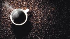 [aT와 함께하는 글로벌푸드 리포트] 인스턴트서 원두로…판 커지는 미얀마 커피시장