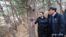 南北, 11~13일 평양서 산림협력방안 협의