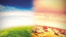 설렁탕 '탄소발자국'은 콩나물국의 100배