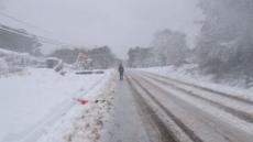 美 남동부, 이번엔 눈폭풍 강타로 4명 사망