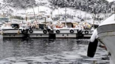 겨울철 선박ㆍ항만 특별 안전점검…저수온 피해 경계령도