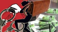 견물생심…여행가이드가 흘린 돈 가방 들고 출국한 일본인 입건